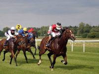 Simple Tips to Win Your Horse Racing